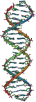 DNA_Overview2
