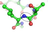 Peptide_bond