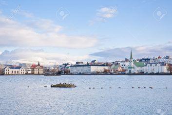 11147424-los-patos-y-los-cisnes-en-el-lago-tj-rnin-en-reykjavik-islandia-foto-de-archivo